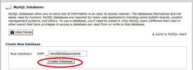 create MySQL database for WordPress