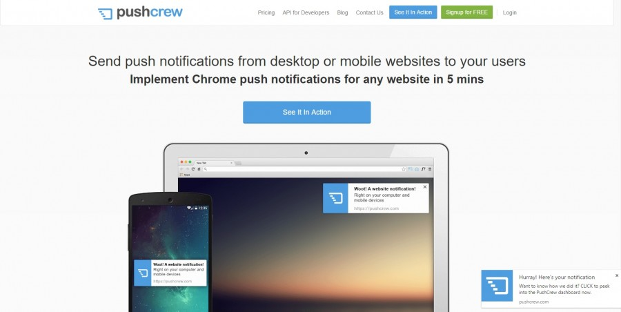 pushcrew WordPress Push Notification Plugins