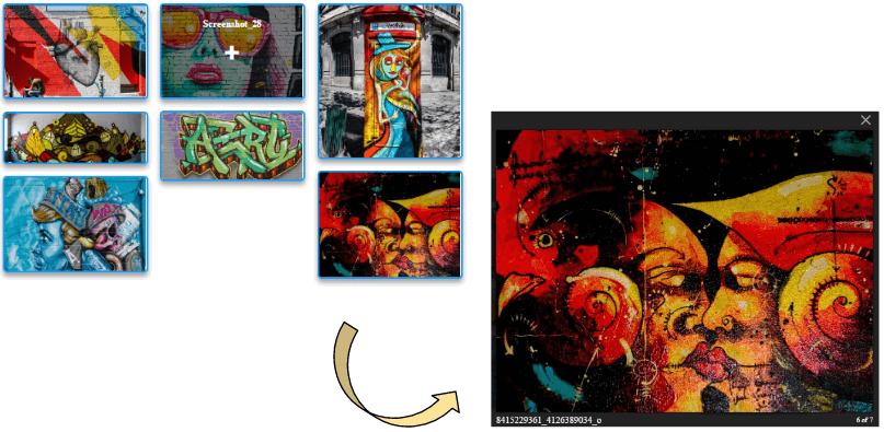 ape-gallery
