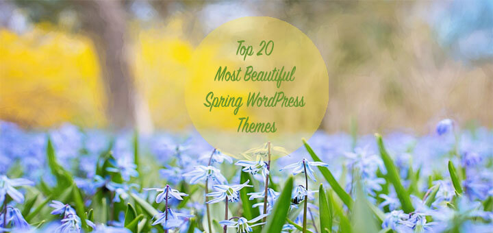 Top 20 Most Beautiful Spring WordPress Themes