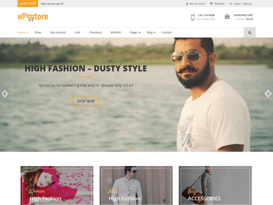WPStore WordPress theme
